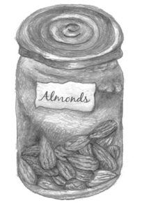 Almond Biscuits - almond illustration