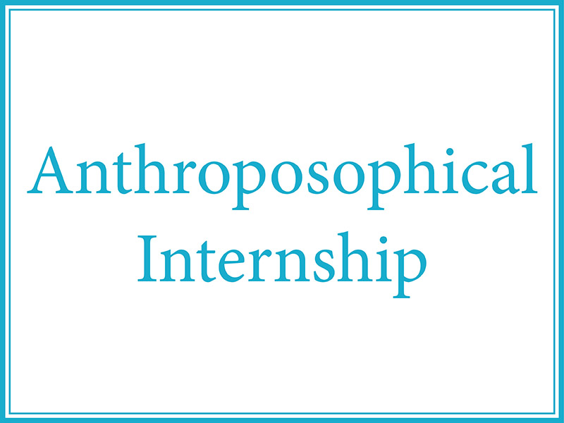 2017 highlights - Anthroposophical Internship