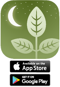 Download on the App Store or Google Play