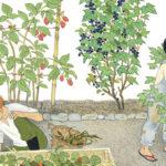 How Does My Fruit Grow blog header