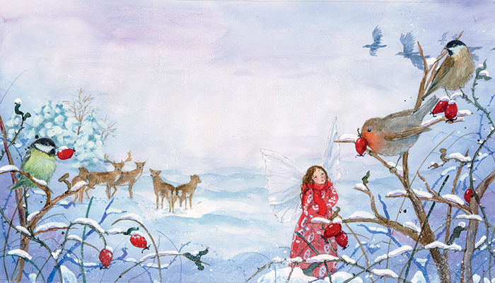 Illustration from Daniela Drescher, Little Fairy's Christmas