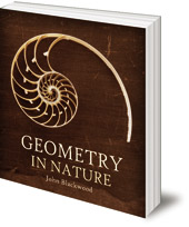 John Blackwood - Geometry in Nature: Exploring the Morphology of the Natural World through Projective Geometry