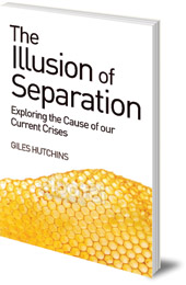 Giles Hutchins - The Illusion of Separation: Exploring the Cause of our Current Crises